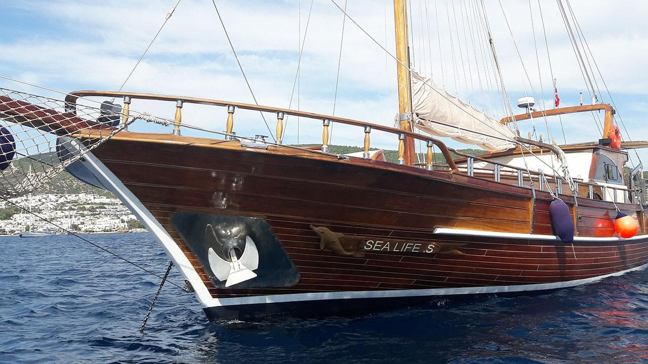 Goélette Sea Life S