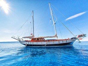 Bonaventura Goélette Yacht