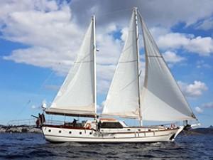Elifim 11 Goélette Yacht