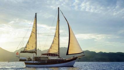 Laila Deniz Goélette
