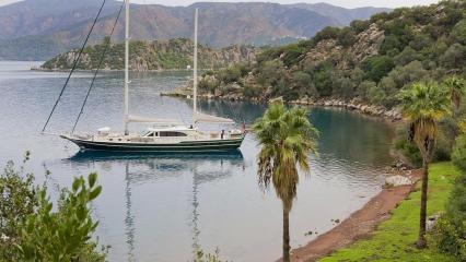 Sailing Nour Goélette