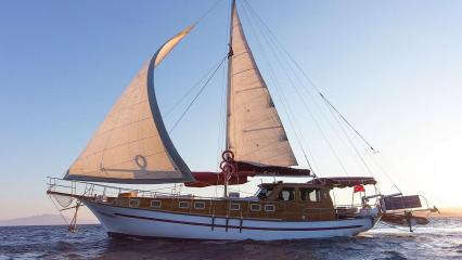 Sea Star 1 Goélette