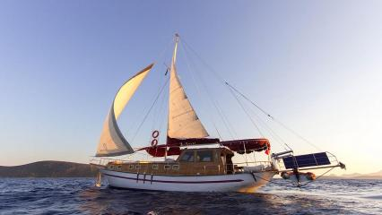 Goélette Sea Star 1