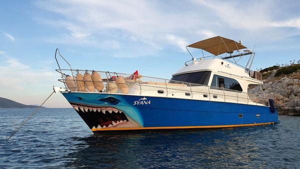 Syana Yacht à moteur